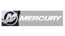 Rivenditori ed installatori Mercury